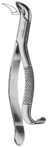 Tooth Extracting Forceps American Pattern